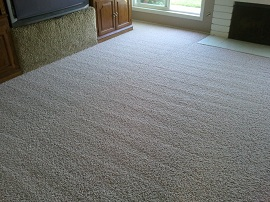 Home Carpet Cleaning Mississauga